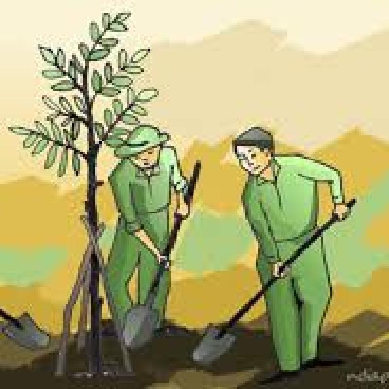 Bài phát biểu Lễ phát động tết trồng cây năm 2018